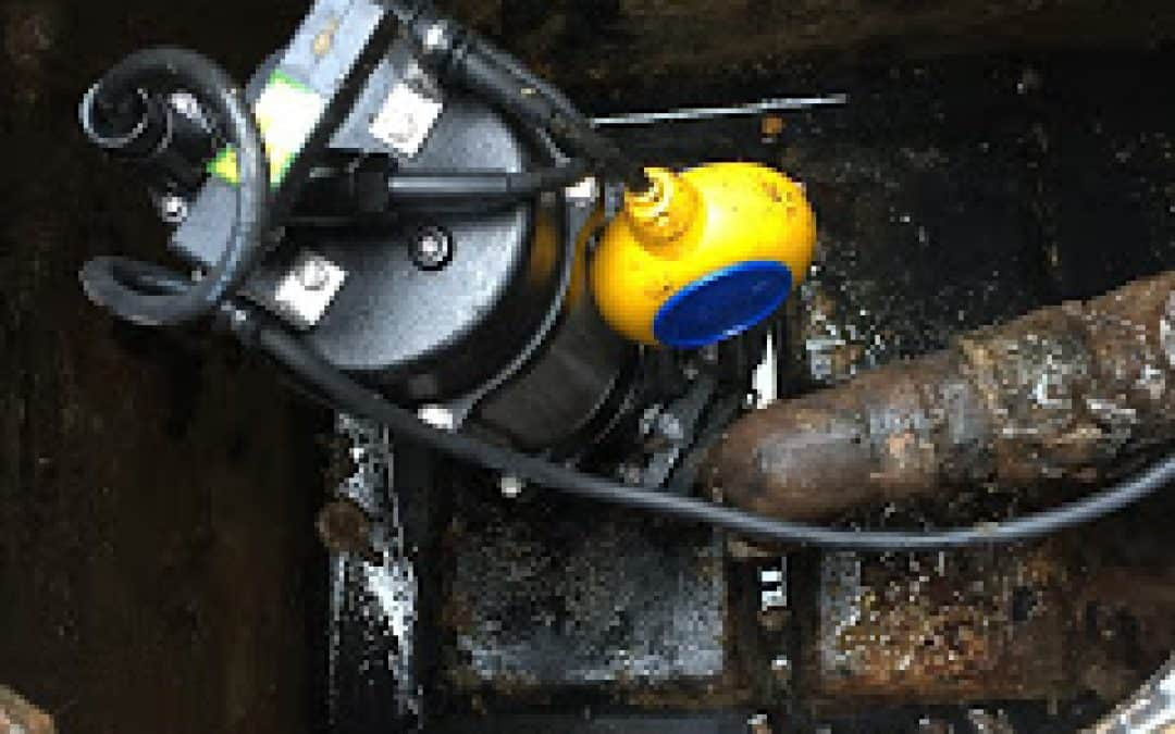 sewage pump replacement | The New forest | lymington